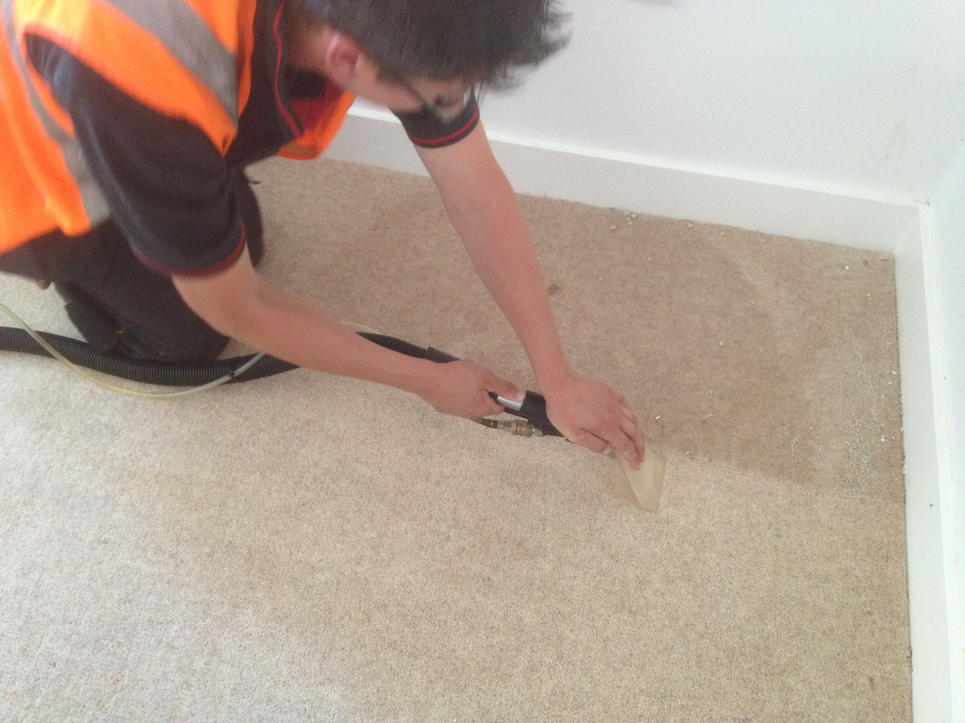 stain removal in plymouth