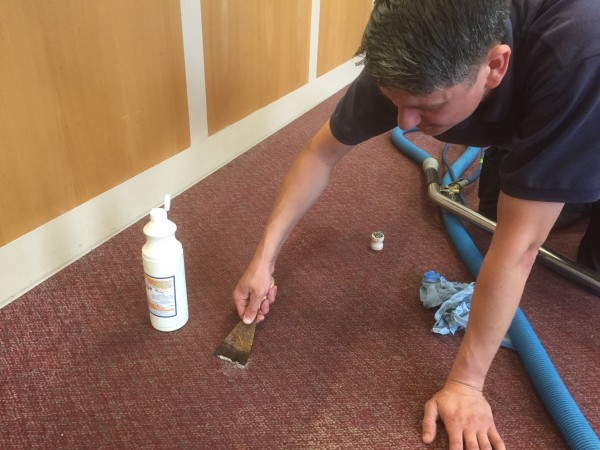 plymouth carpet cleaning